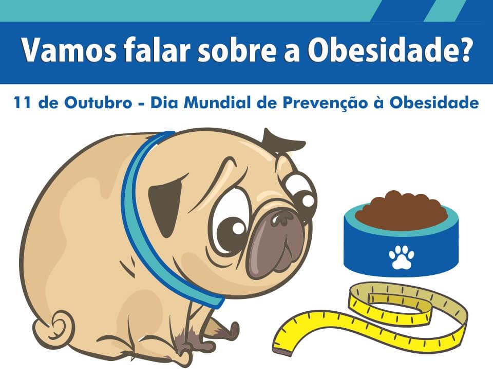 endocrinologia veterinária - artigo sobre obesidade em cães e gatos